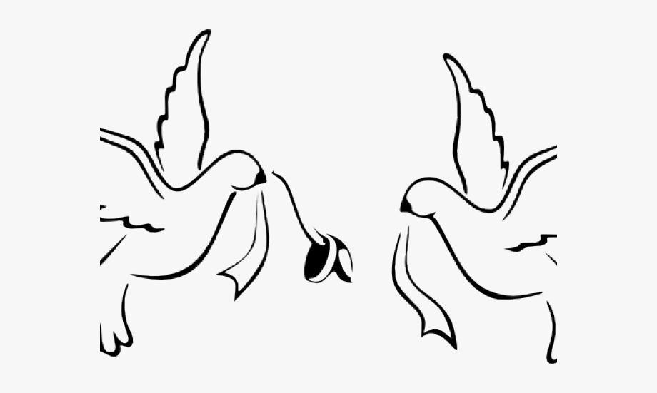Marriage clipart dove. White wedding png