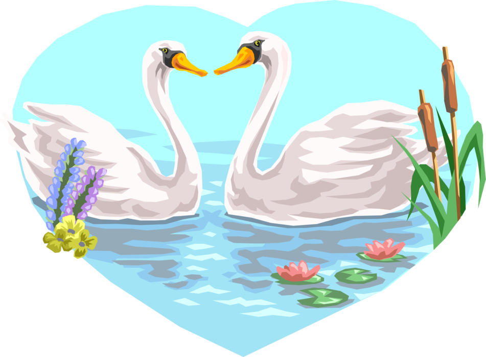 Mute swimming vector image. Couple clipart swan