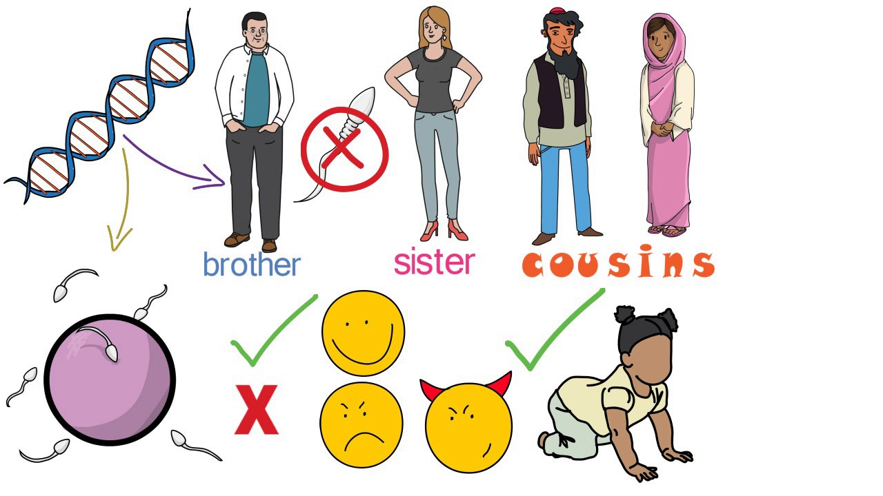 graphic first cousin. Cousins clipart united