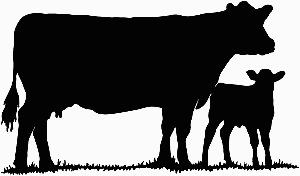 Cow clipart calf. Free silhouette cliparts download