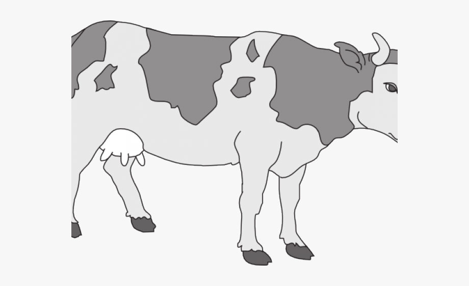 Cow clipart colored. Dairy free cliparts on