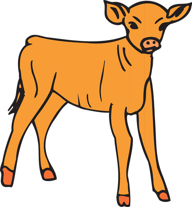 Cow clipart home. Baby cliparts shop of