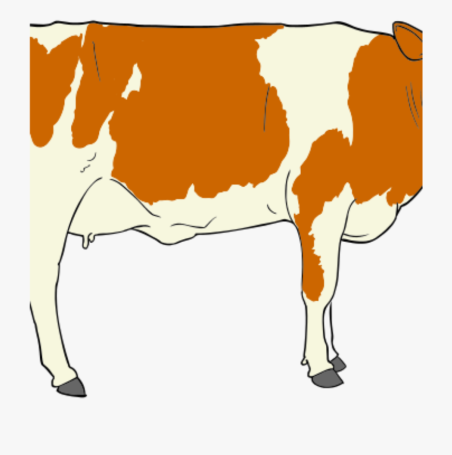 Cow clipart mouth. Cows beef clip art