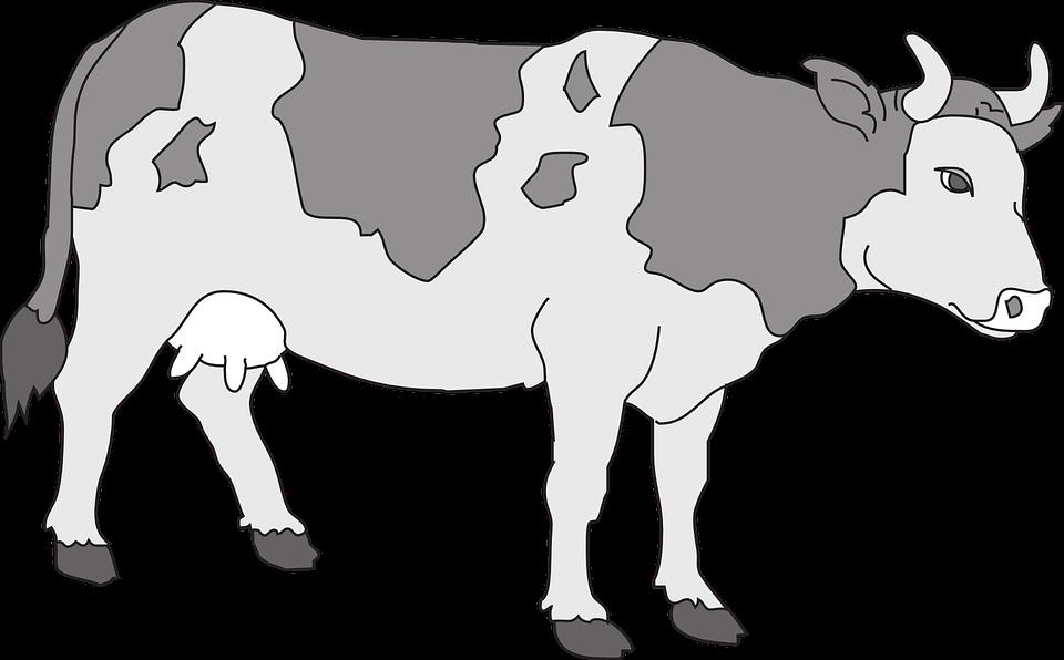 Cows clipart waste. Farm animals livestock pencil