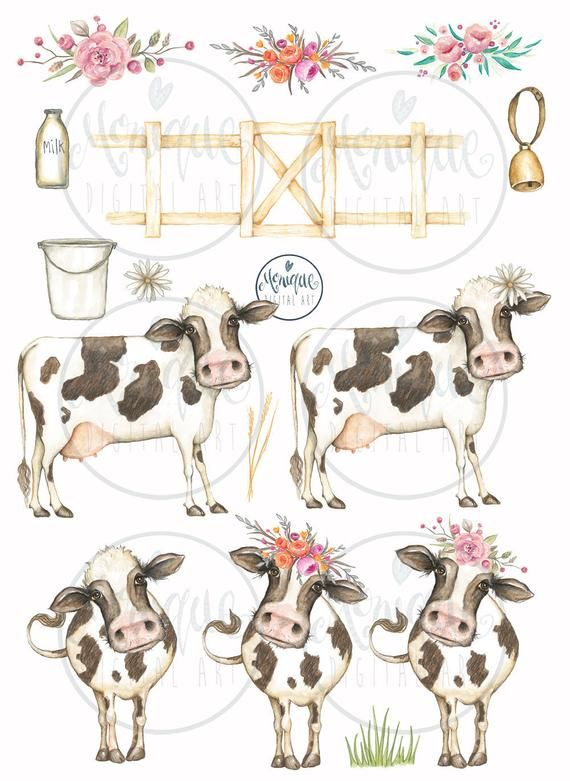 Pin on creative market. Cow clipart watercolor