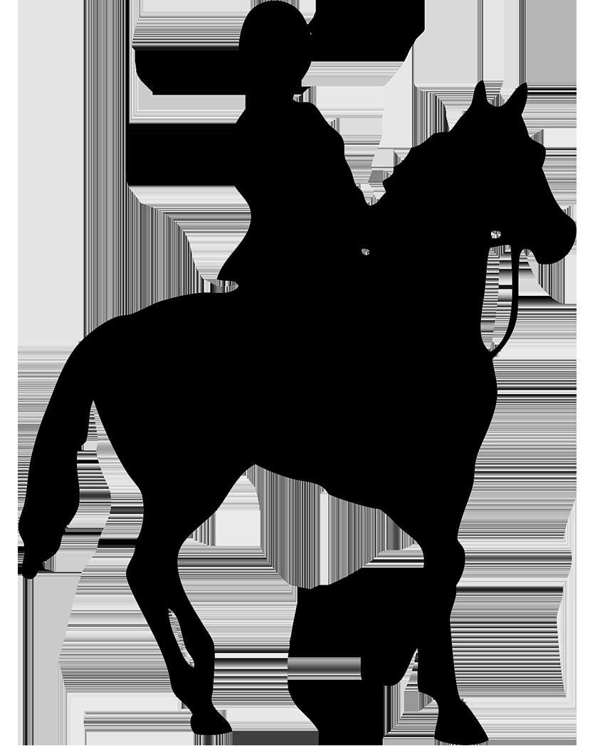 Girl clipart horseback riding. Png horse transparent images