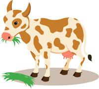 Free cow clip art. Cows clipart