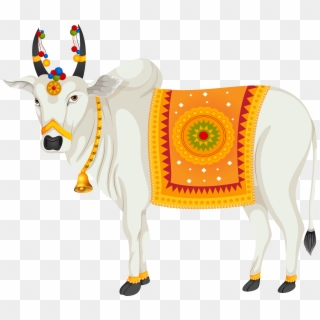 Cows clipart cow indian. Png images free transparent