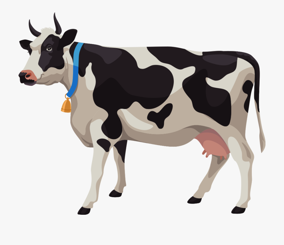 Cattle stock illustration photography. Cows clipart dairy cow