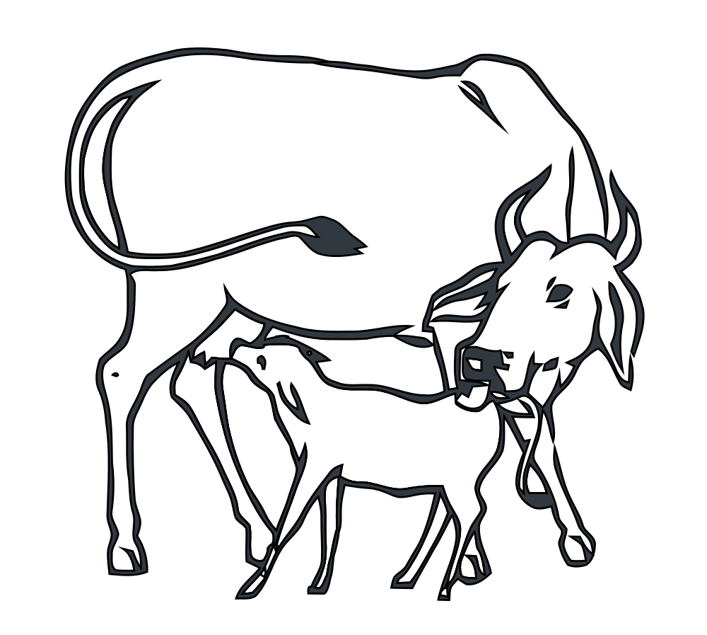 Cow image shop of. Cows clipart home