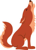 Coyote clipart. Search results for clip