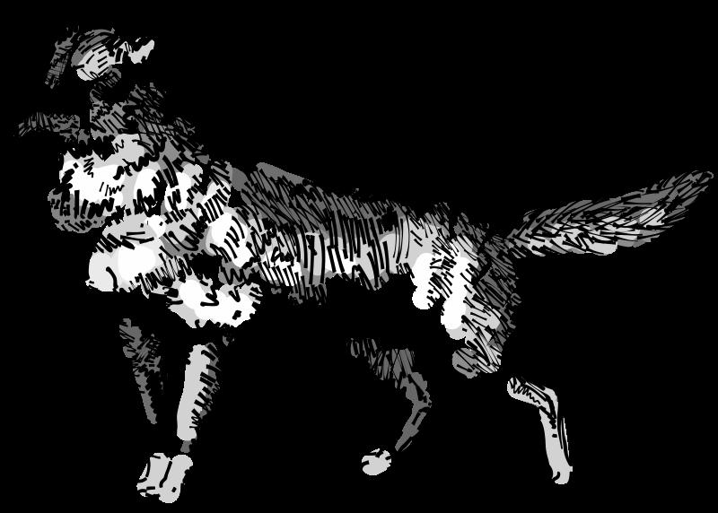Bclipart ctit. Coyote clipart jackal
