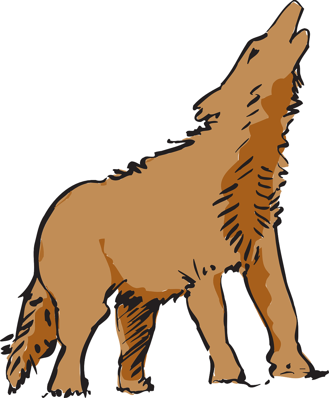 Wolf howling canine png. Coyote clipart lobo