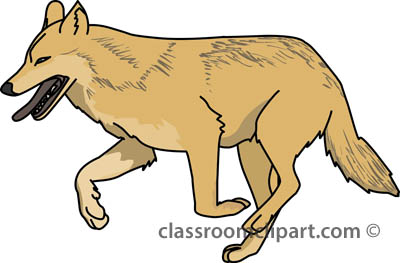 Coyote clipart standing. Wolf gray clipartandscrap