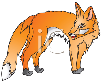 Coyote clipart swift. X free clip art