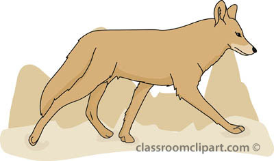 Image . Coyote clipart swift