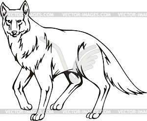 Coyote clipart vector. Panda free images