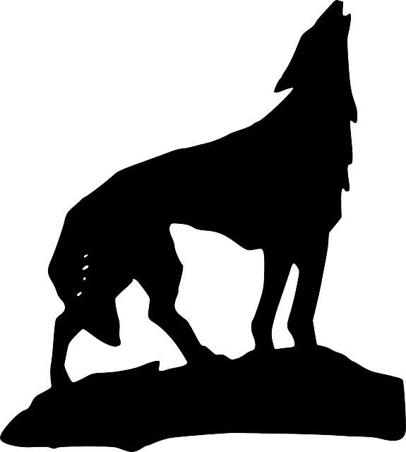 Drawing silhouette at getdrawings. Coyote clipart werewolf