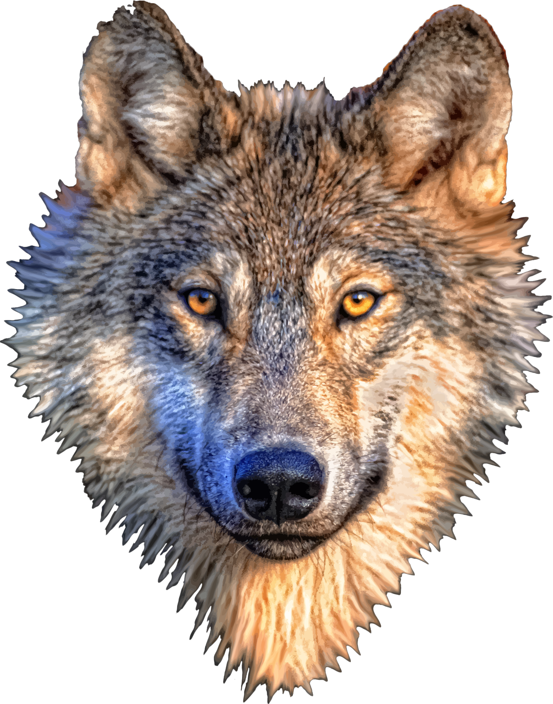 Big image png. Wolf clipart wolf head