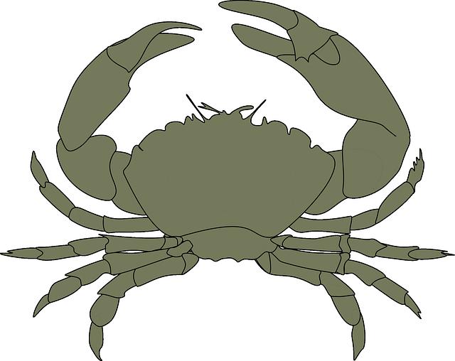 Crab clipart aquatic animal. Free image on pixabay