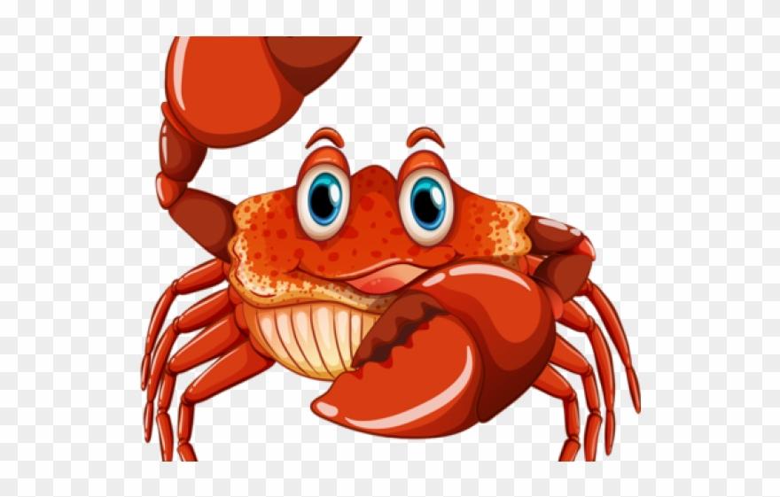 Hermit crab illustration png. Crabs clipart big eyed