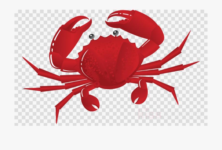 Crab clipart chilli crab. Clip art cliparts