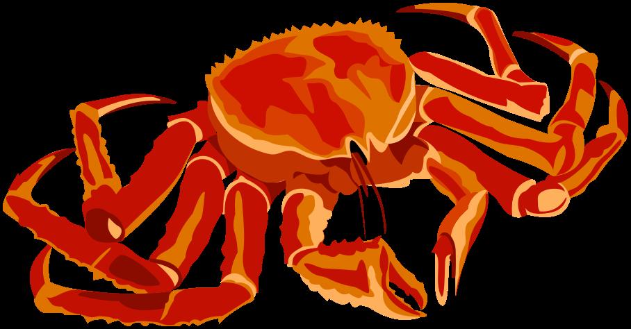 crab clipart crab drawing