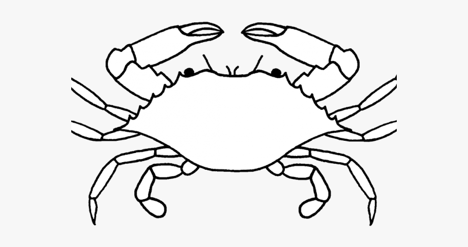 Crabs clipart black and white. Crustacean crab drawing