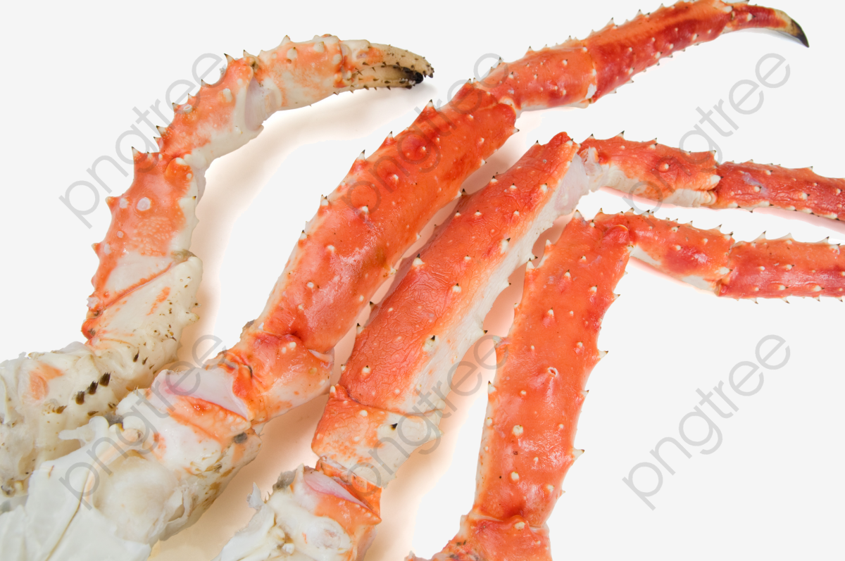 Legs hairy png . Crabs clipart crab leg