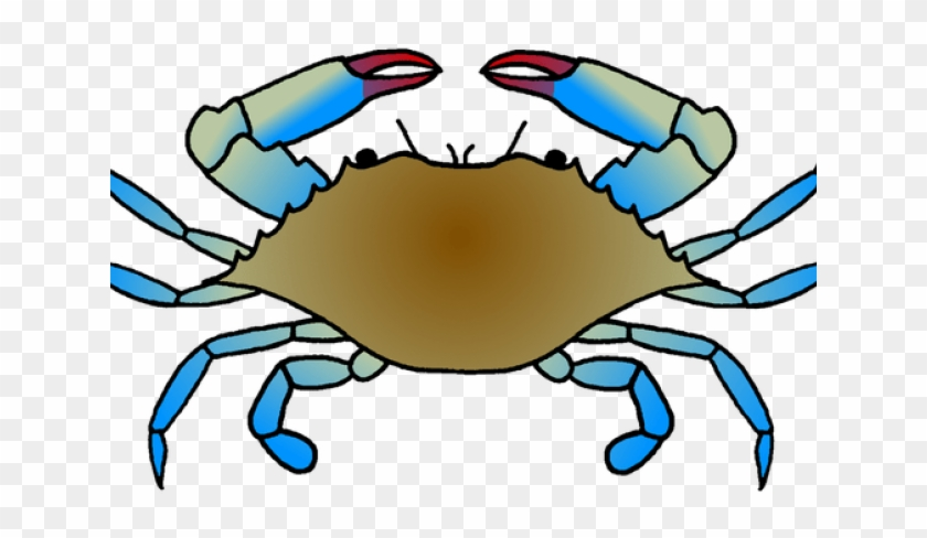 Crab drawing of a. Crabs clipart crusty
