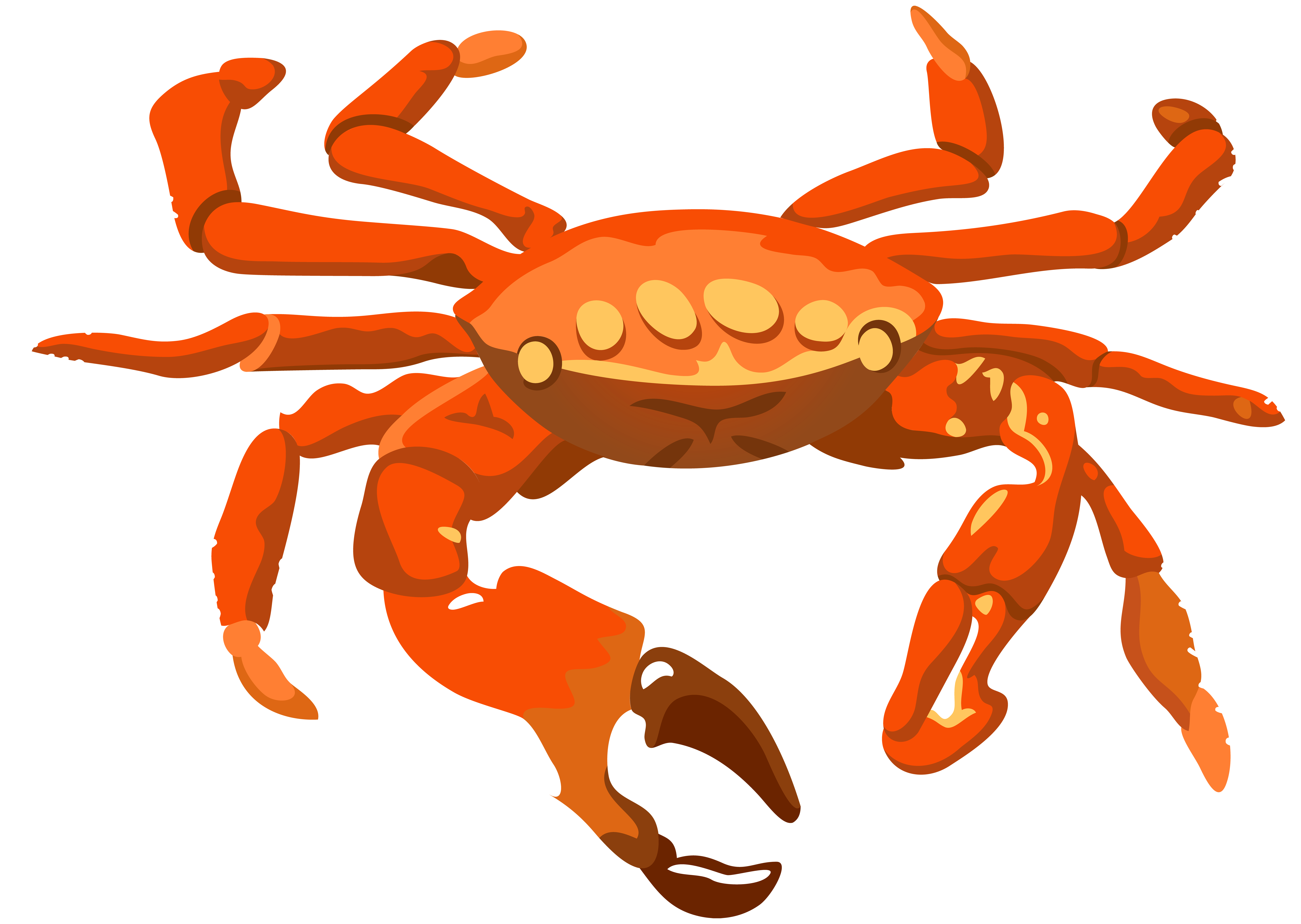 Crab clipart dungeness crab.  collection of transparent