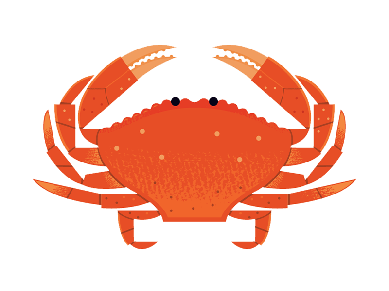 Seafood background orange font. Crab clipart dungeness crab