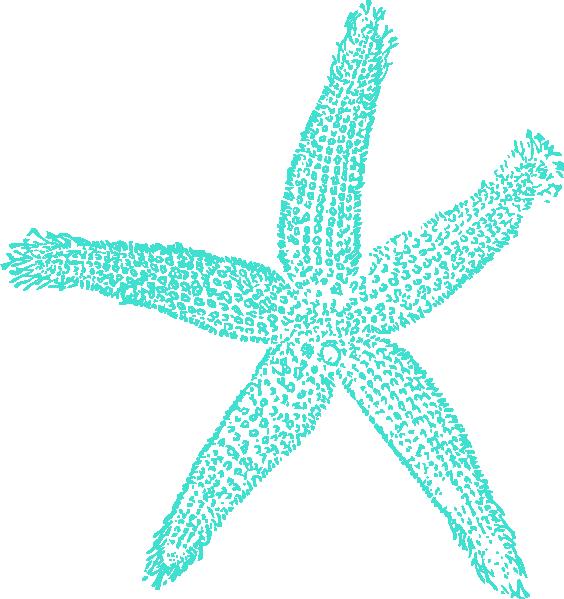 Aqua frames illustrations hd. Starfish clipart ornate