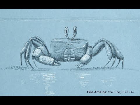 Crab clipart ghost crab. How to draw a