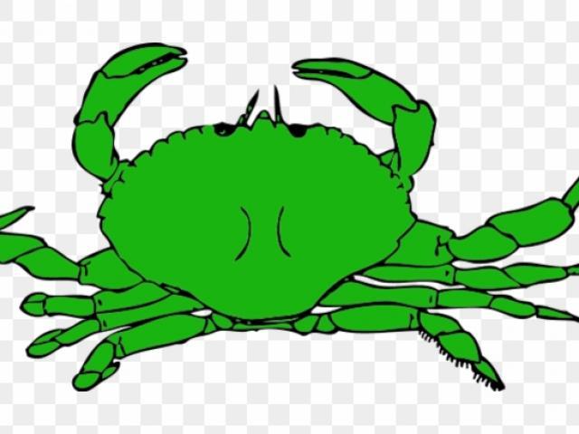 Crab clipart green. X free clip art