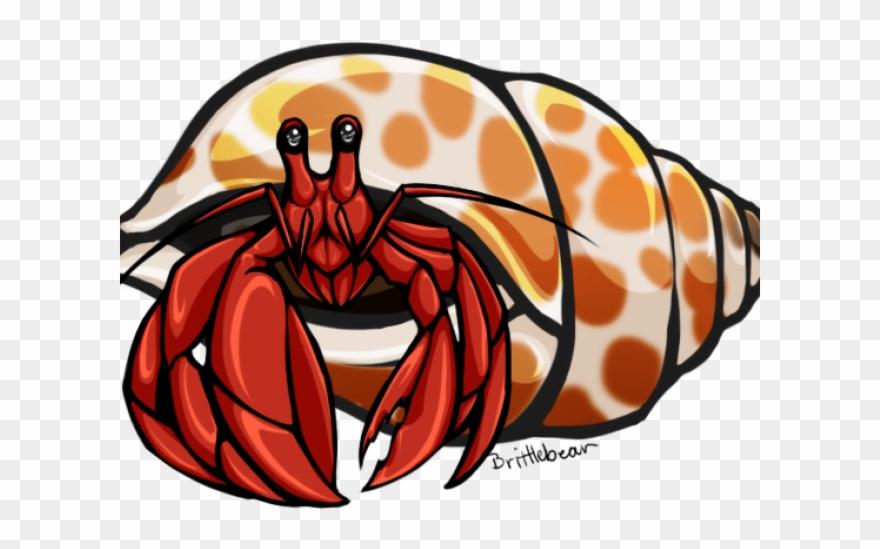 Carson dellosa clip art. Crab clipart hermit crab