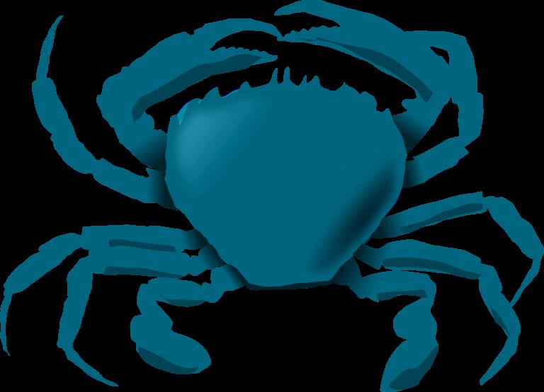 Crab clipart illustration. Blue crazywidow info