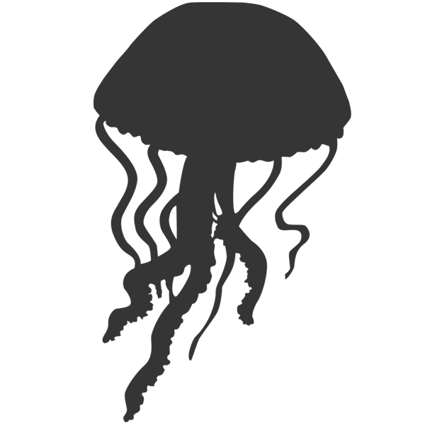 Shell clipart jellyfish. Silhouette images pictures becuo
