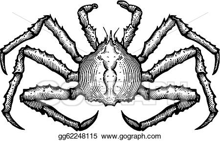 Crab clipart king crab. Drawing a black and