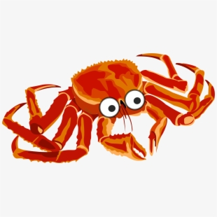 Pink red drawing . Crab clipart king crab