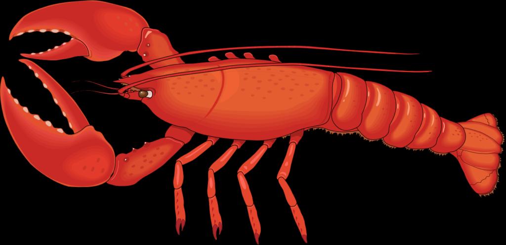 Png hd peoplepng com. Lobster clipart vintage
