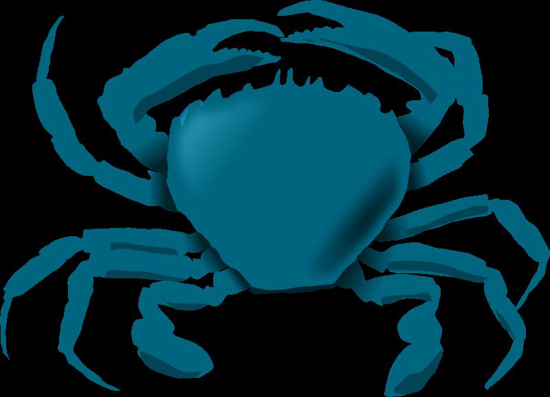 Blue crab at getdrawings. Crabs clipart preppy