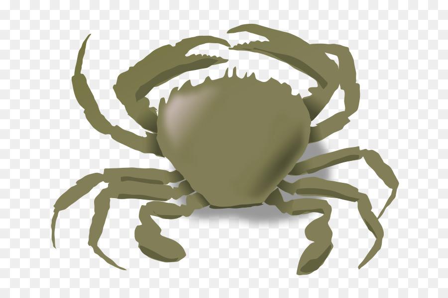 Crab clipart sand crab. Mole cartoon graphics transparent