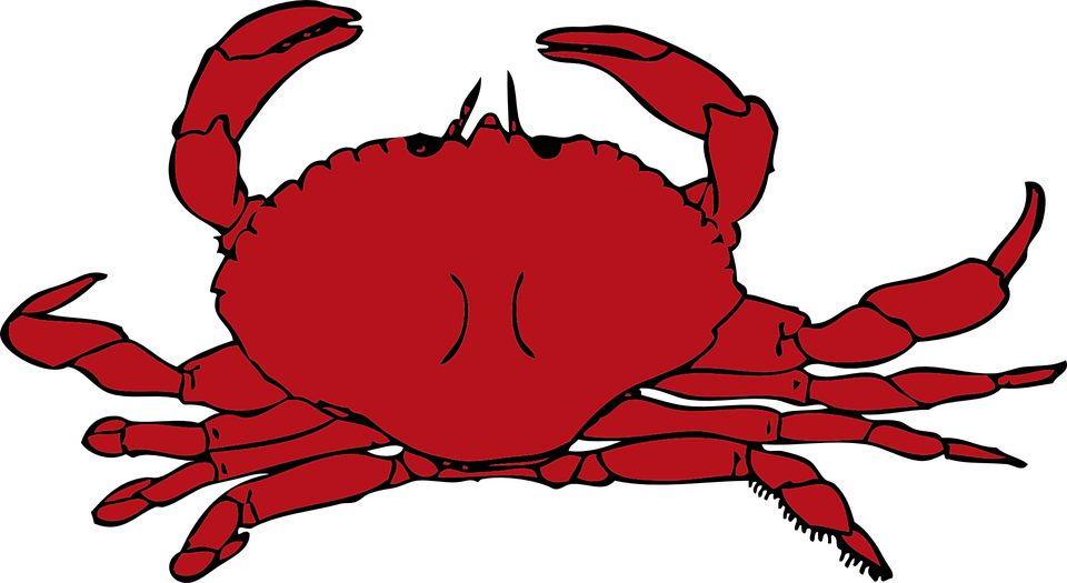 Crab clipart snow crab. Cartoon claw best for