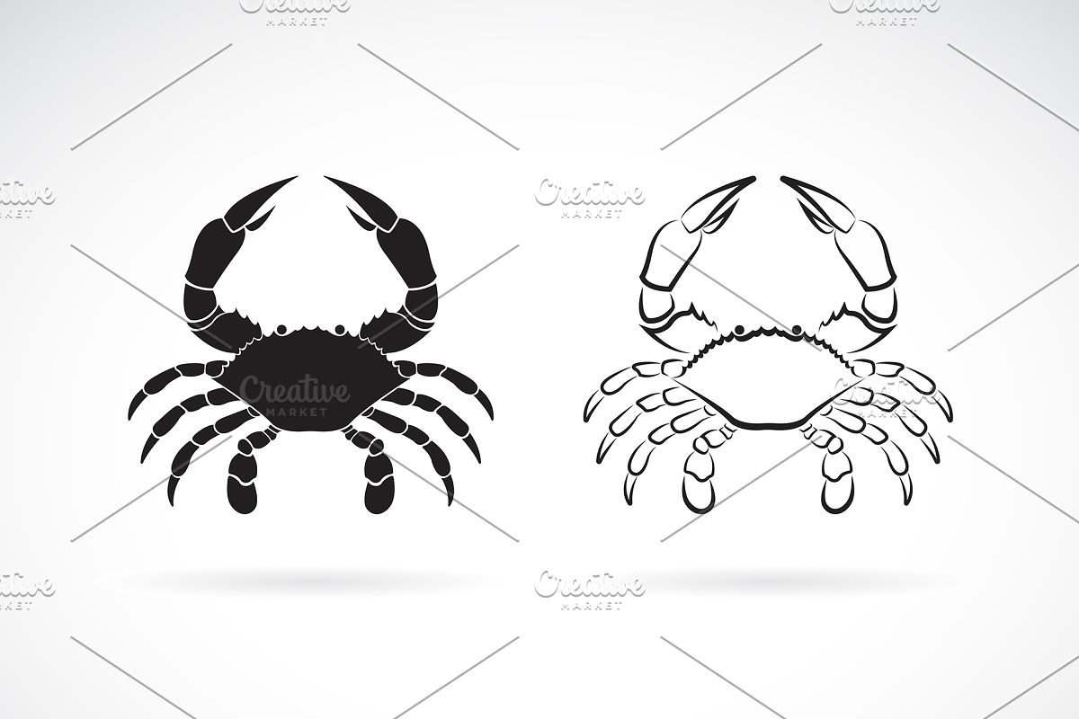 Crab clipart two animal. Vector of sea creature