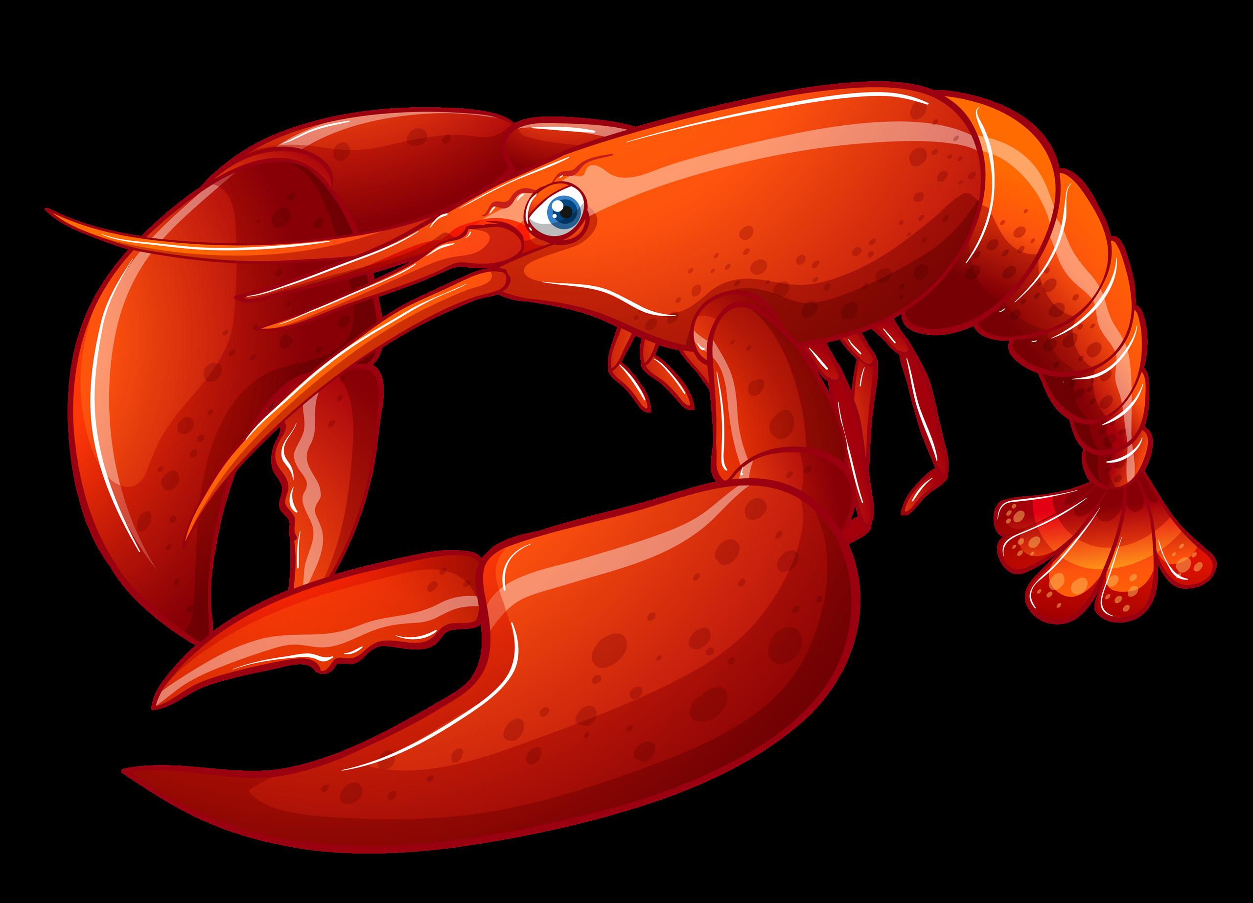 Crab clipart underwater.  png pinterest album