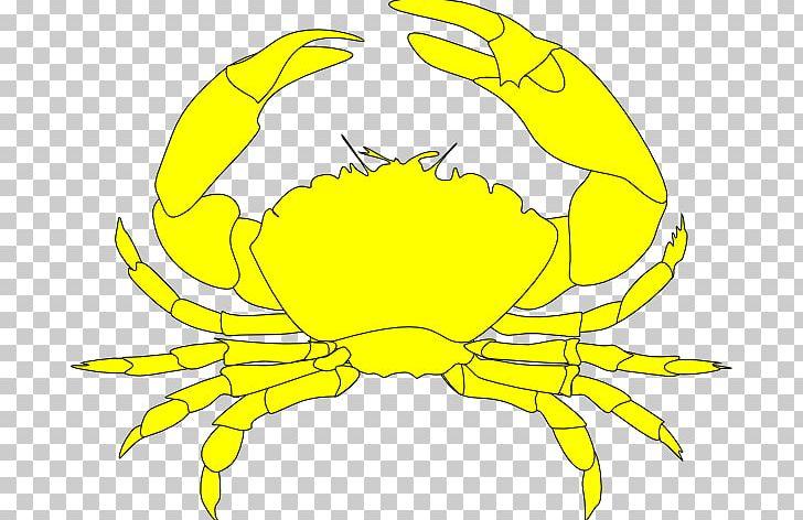 Crab clipart yellow crab. Dungeness nagatinskaya ulitsa png