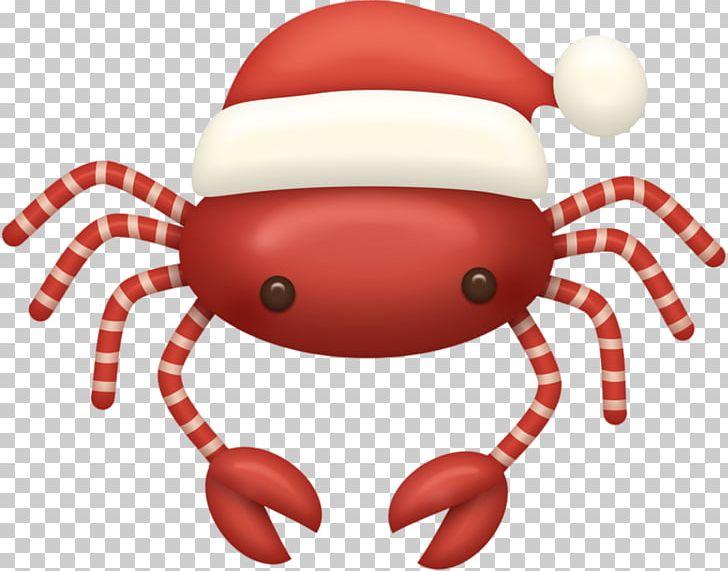 Crabs clipart christmas. Santa claus crab ornament