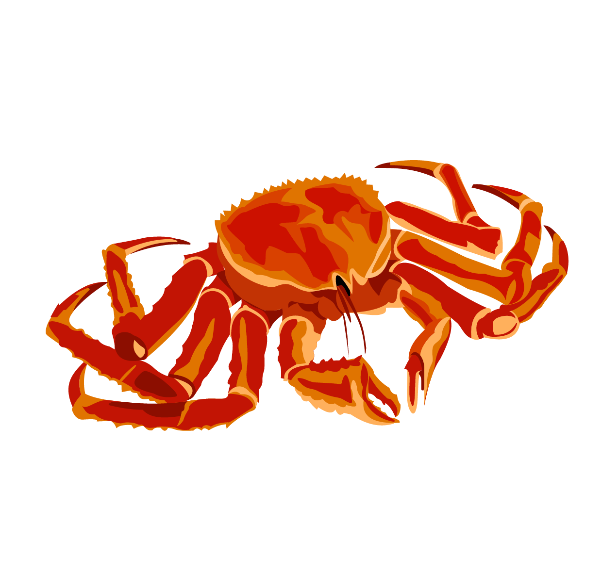 Crabs clipart coconut crab. Red king clip art