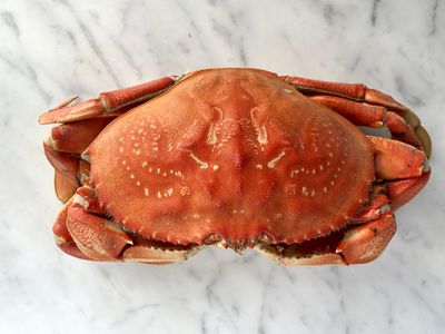 Crabs clipart crab boil.  easy methods for